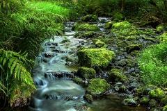 Landschaft-Natur-Funcke-14