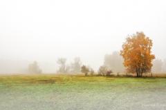 Landschaft-Natur-Funcke-3